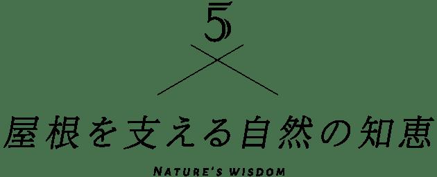 4 屋根を支える自然の知恵 Nature's wisdom