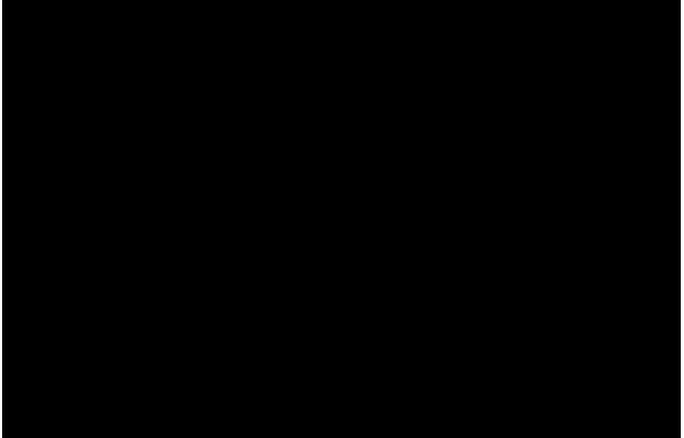内宮と外宮の正殿では、千木の他にもいくつか違いが見られます。例えば、屋根の基本構造もそのひとつ。模型正面に見える大きな3本の柱、その両端の上部をご覧ください。柱の上に梁が載り、その上に桁と呼ばれる構造材が突き出しています。これは「折置組」と呼ばれる建築方法で、内宮では桁の上に梁が乗る「京呂組」で作られています。