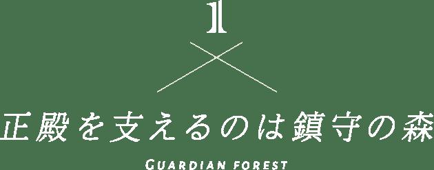 1 正殿を支えるのは鎮守の森 Guardian forest